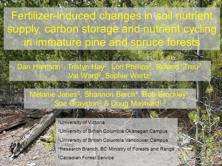 Fertilizer-induced changes in soil nutrient supply, carbon storage and nutrient cycling in immature pine and spruce forests Melanie Jones 2, Shannon Berch.