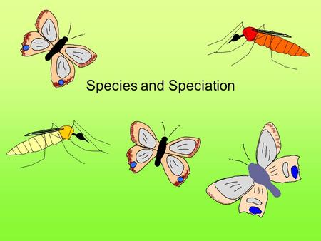Species and Speciation.  Within each population there are breeding subunits called demes  Individuals within a deme tend to breed with each other more.