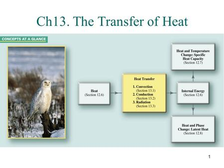 Ch13. The Transfer of Heat.