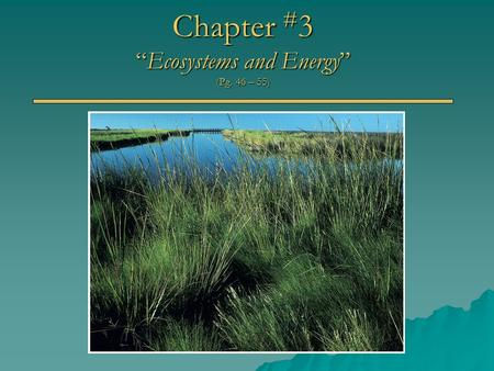 "Chapter # 3 ""Ecosystems and Energy"" (Pg. 46 – 55)."