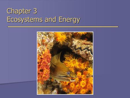 Chapter 3 Ecosystems and Energy. Overview of Chapter 3  What is Ecology?  The Energy of Life  Laws of Thermodynamics  Photosynthesis and Cellular.