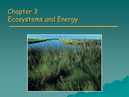 Chapter 3 Ecosystems and Energy. Overview of Chapter 3 o Ecology o Energy First Law of Thermodynamics First Law of Thermodynamics Second Law of Thermodynamics.
