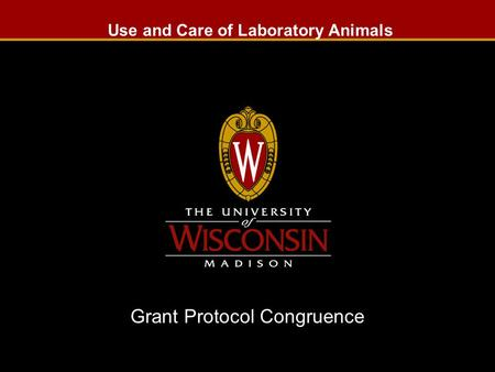Use and Care of Laboratory Animals Grant Protocol Congruence Slide 1.