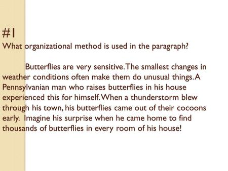 #1 What organizational method is used in the paragraph? Butterflies are very sensitive. The smallest changes in weather conditions often make them do unusual.