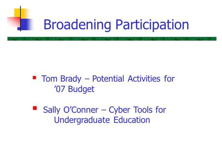 Broadening Participation  Tom Brady – Potential Activities for '07 Budget  Sally O'Conner – Cyber Tools for Undergraduate Education.