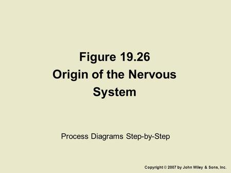 Figure 19.26 Origin of the Nervous System Process Diagrams Step-by-Step Copyright © 2007 by John Wiley & Sons, Inc.