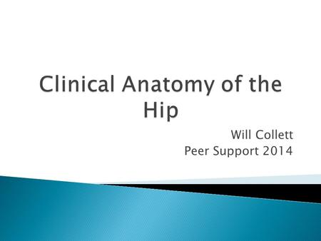 Will Collett Peer Support 2014.  Avascular necrosis  Superior Gluteal Nerve Injury  Inferior Gluteal Nerve Injury  Thomas Test  Injection Site.