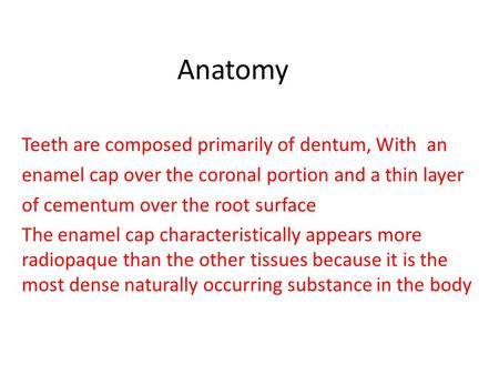 Anatomy Teeth are composed primarily of dentum, With an enamel cap over the coronal portion and a thin layer of cementum over the root surface The enamel.