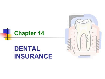 DENTAL INSURANCE Chapter 14. 2 DENTAL INSURANCE Learning Outcomes 14-1Locate and describe the parts of the mouth and the teeth. 14-2Recognize key words,