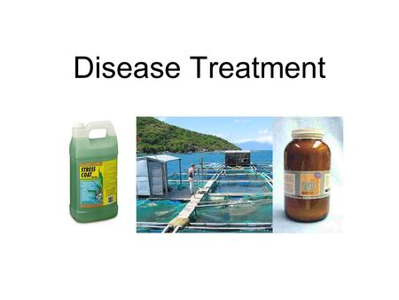 Disease Treatment. Methods of Disease Control in Fish Test and Slaughter Quarantine or restrict movements Destruction of transmission link Immunity/disease.