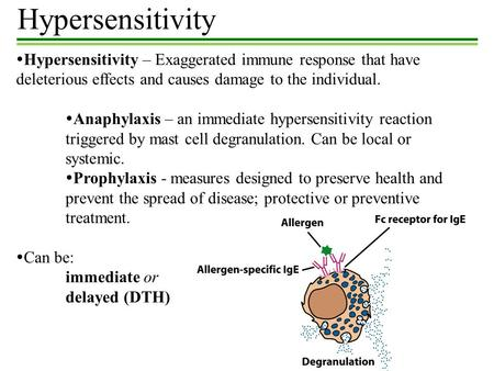 Hypersensitivity Hypersensitivity – Exaggerated immune response that have deleterious effects and causes damage to the individual. Anaphylaxis – an immediate.