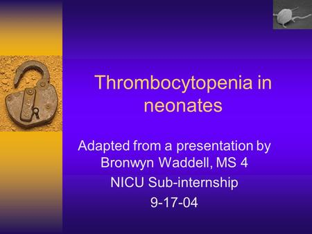 Thrombocytopenia in neonates Adapted from a presentation by Bronwyn Waddell, MS 4 NICU Sub-internship 9-17-04.