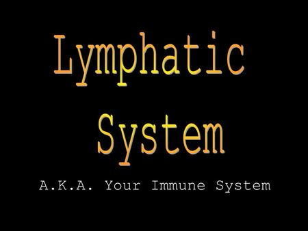 A.K.A. Your Immune System. Function of Lymphatic System The lymphatic system helps the body defend itself against disease and maintain homeostasis.