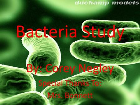 Bacteria Study By: Corey Negley Special Thanks To: Mrs. Bonnett.
