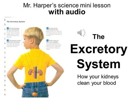 Mr. Harper's science mini lesson with audio