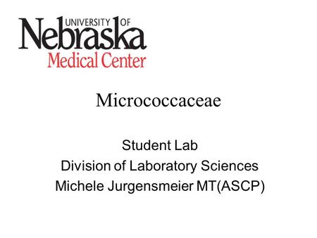 Micrococcaceae Student Lab Division of Laboratory Sciences Michele Jurgensmeier MT(ASCP)