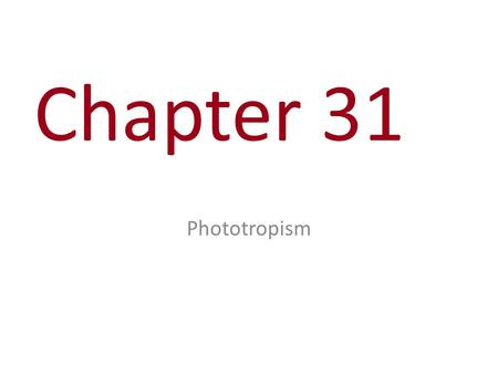 Chapter 31 Phototropism. You Must Know The three components of a signal transduction pathway and how changes could alter cellular responses. (This is.