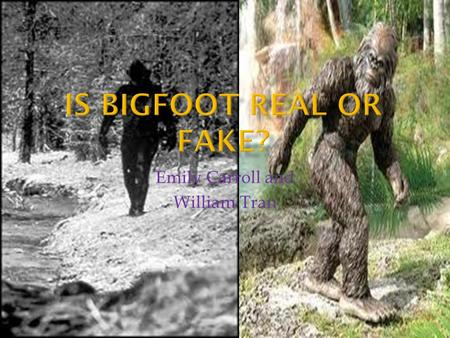 Emily Carroll and William Tran.  Bigfoot (hunters) can just fake footprints with casts and stomp on the ground.  Pictures of Bigfoot could just be pictures.