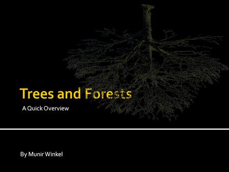 A Quick Overview By Munir Winkel. What do you know about: 1) decision trees 2) random forests? How could they be used?