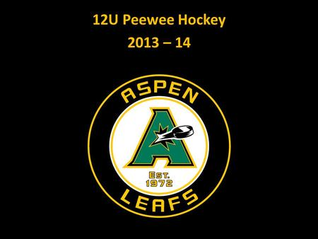 12U Peewee Hockey 2013 – 14. Objectives: AJH Mission and Goals Mission: Developing youth into young men and women with strong character through the sport.