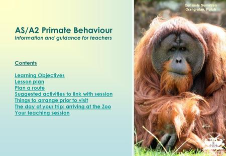 AS/A2 Primate Behaviour Information and guidance for teachers Contents Learning Objectives Lesson plan Plan a route Suggested activities to link with session.