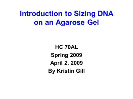 Introduction to Sizing DNA on an Agarose Gel HC 70AL Spring 2009 April 2, 2009 By Kristin Gill.