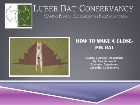 HOW TO MAKE A CLOSE- PIN BAT Step by Step Craft Instructions By: Alex Henwood Education Department Lubee Bat Conservancy.