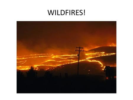 WILDFIRES!.