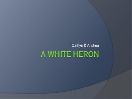 a white heron rdquo sarah orne jewett ppt video online caitlyn andrea a white heron