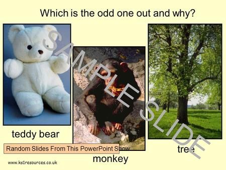 Www.ks1resources.co.uk Which is the odd one out and why? teddy bear monkey tree SAMPLE SLIDE Random Slides From This PowerPoint Show.