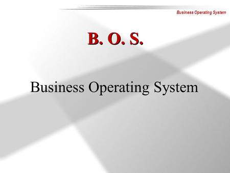 Business Operating System