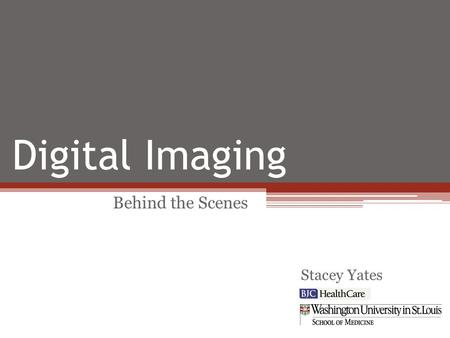 Digital Imaging Behind the Scenes Stacey Yates. Implemented Workflow Challenges/Solutions Added Value Future Plans Overview.