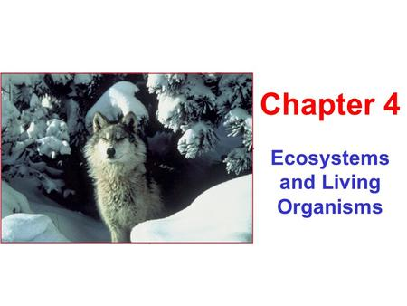 Ecosystems and Living Organisms Chapter 4. Evolution Genetic changes in a population through time. Occurs through natural selection Overproduction Variation.