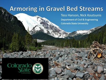 Armoring in Gravel Bed Streams