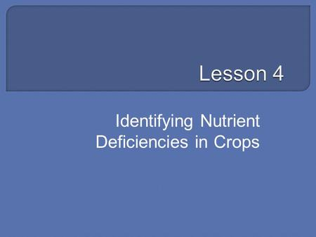 Identifying Nutrient Deficiencies in Crops