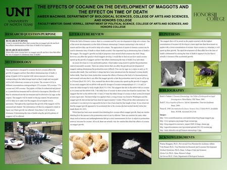 THE EFFECTS OF COCAINE ON THE DEVELOPMENT OF MAGGOTS AND THE EFFECT ON TIME OF DEATH AMBER MACINNIS, DEPARTMENT OF BIOLOGICAL SCIENCES, COLLEGE OF ARTS.