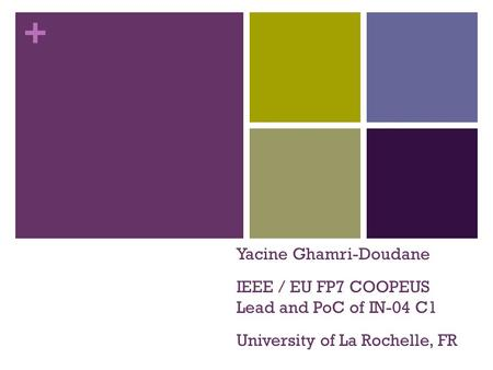 + Yacine Ghamri-Doudane IEEE / EU FP7 COOPEUS Lead and PoC of IN-04 C1 University of La Rochelle, FR.