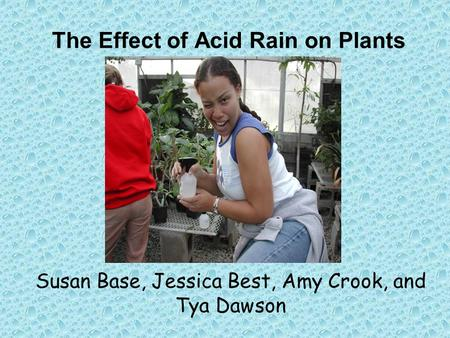 The Effect of Acid Rain on Plants Susan Base, Jessica Best, Amy Crook, and Tya Dawson.