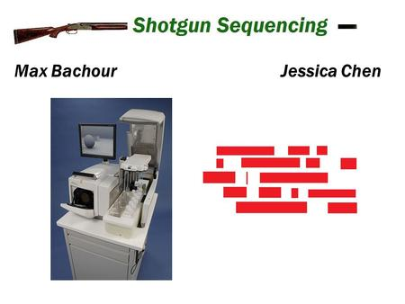 Max BachourJessica Chen. Shotgun or 454 sequencing High throughput sequencing technique that can collect a large amount of data at a fast rate. Works.