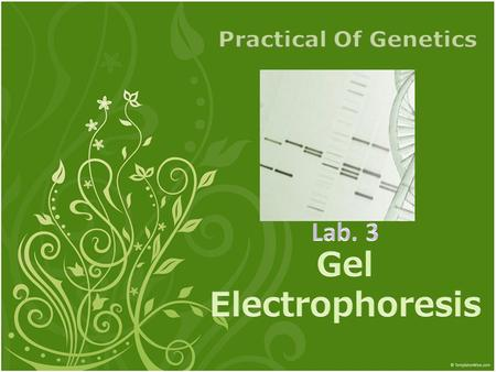 Objective : To learn how to prepare agarose Gel Electrophoresis.