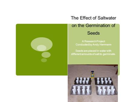 The Effect of Saltwater on the Germination of Seeds A Research Project Conducted by Andy Herrmann Seeds are placed in water with different amounts of salt.