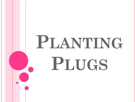 P LANTING P LUGS. B ELL R INGER Write the answer to the questions in your notebook. GET STARTED!!! What is a plug? What is the difference between a plug.