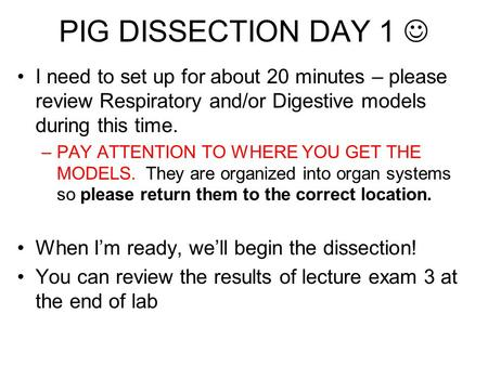 PIG DISSECTION DAY 1  I need to set up for about 20 minutes – please review Respiratory and/or Digestive models during this time. PAY ATTENTION TO WHERE.