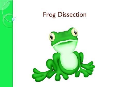 Frog Dissection. First Steps 1. Rinse frog in water 2. Obtain frog and place frog on its dorsal (back) side.  Pin limbs to dissection tray.