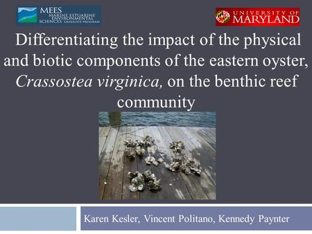 Karen Kesler, Vincent Politano, Kennedy Paynter Differentiating the impact of the physical and biotic components of the eastern oyster, Crassostea virginica,