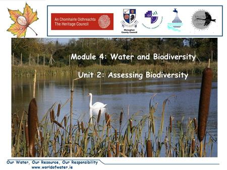 Our Water, Our Resource, Our Responsibility www.worldofwater.ie DRAFT Module 4: Water and Biodiversity Unit 2: Assessing Biodiversity.
