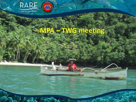 MPA – TWG meeting. Agenda 1.Finalization of the Vision & Mission 2.Name or tag of the TWG.