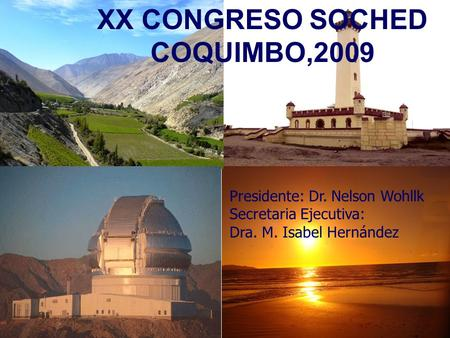 XX CONGRESO SOCHED COQUIMBO,2009 Presidente: Dr. Nelson Wohllk Secretaria Ejecutiva: Dra. M. Isabel Hernández.