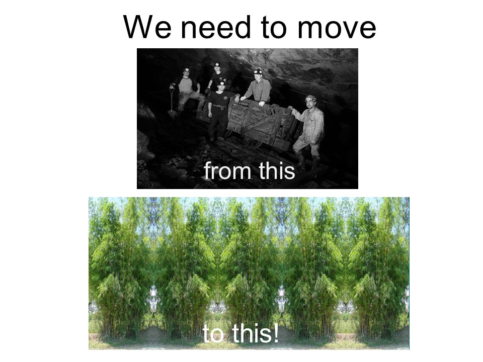 Remember, we need to save our world for our children. Help save the world with bamboo!!!