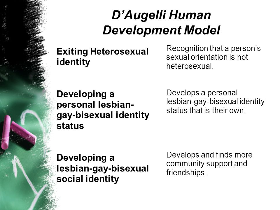 DAugelli Human Development Model Becoming a lesbian- gay-bisexual offspring Developing a lesbian-gay-bisexual intimacy status Entering a lesbian gay-bisexual community Focuses on coming out with his or her biological family and dealing with the variety of issues and responses that result.